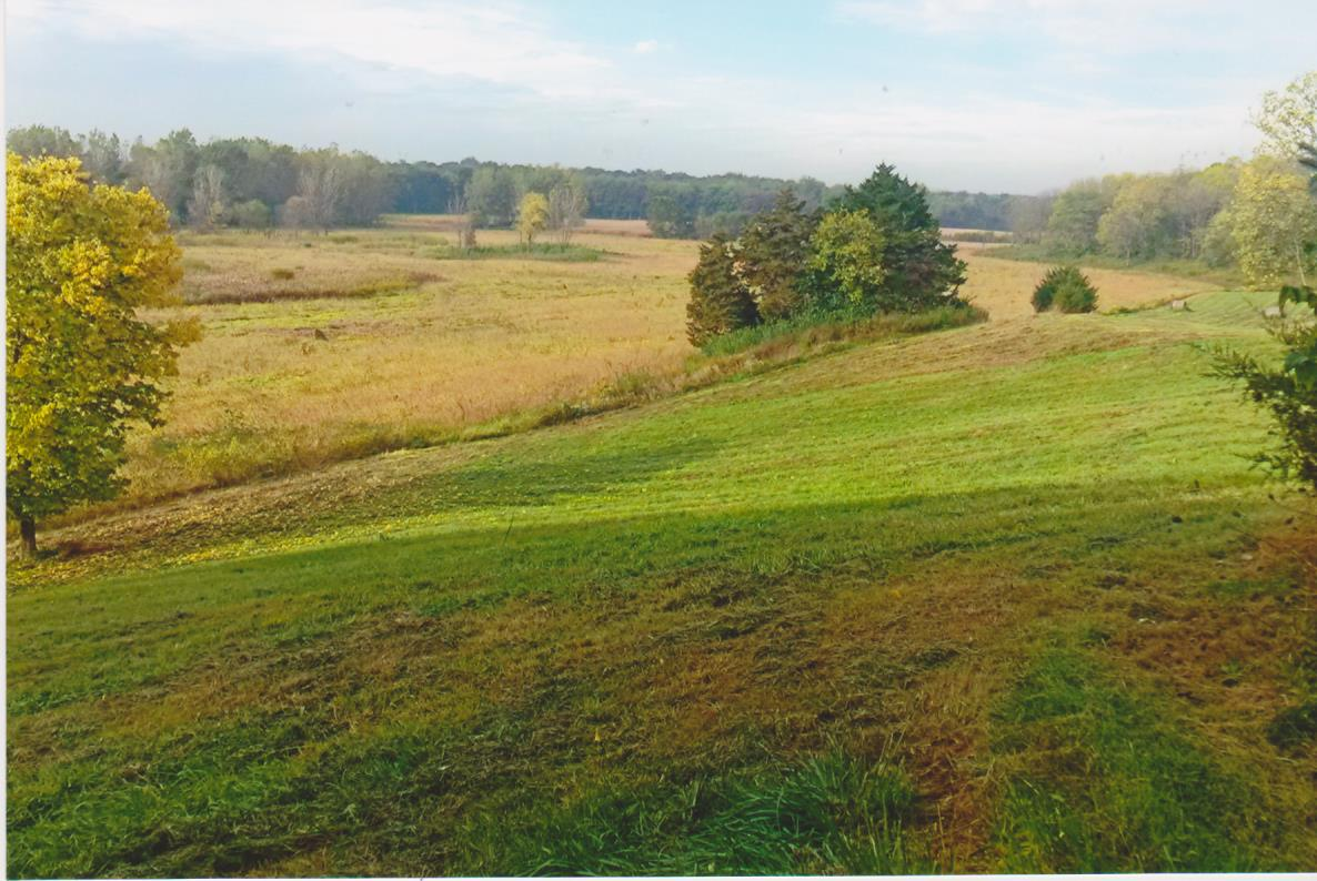 50 acres wooded hunting land   tillable farmland for sale