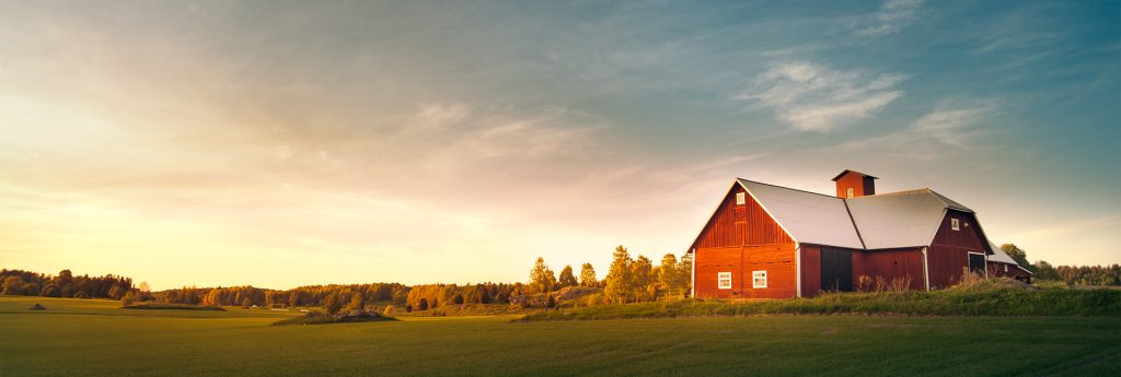 Agricultural Concerns Amid the Coronavirus Pandemic barn